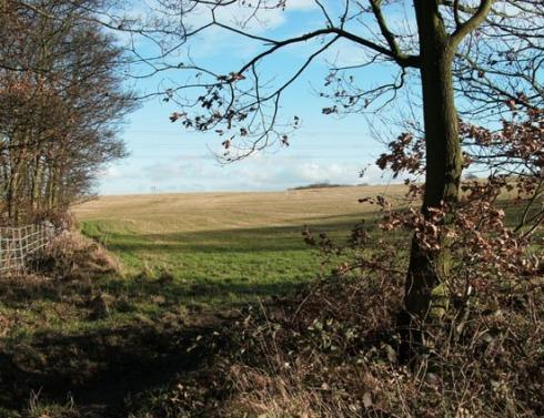 walk-plough-jan09